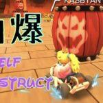 自爆 Self destruct 小学生(風)のゲーム実況 マリオカートツアー MARIOKARTTOUR